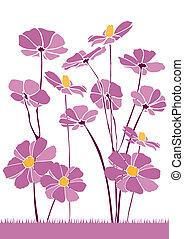 flourishes, 6