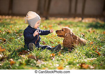 garçon, herbe, chien, séance