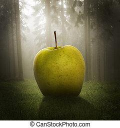 grand, forêt, pomme