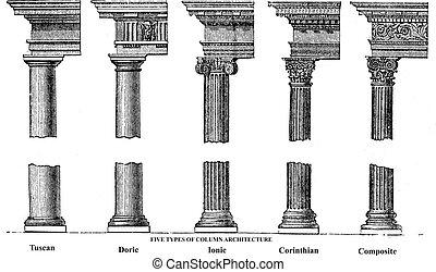 gravure, vieux, colonne, cinq, architecture, types
