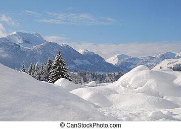 hiver, neige, arbres, autrichien, couvert, paysage
