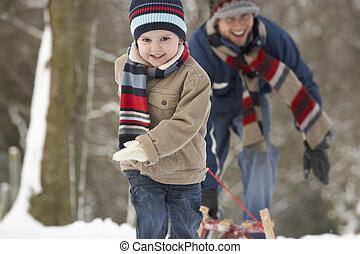 hiver, traîneau, traction, par, enfants, paysage