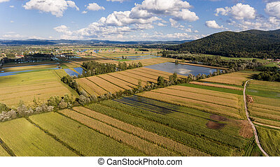 inondé, fields., vue aérienne