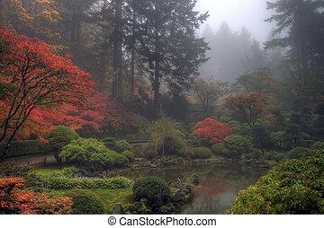 japonais jardin, matin, automne, brumeux, une