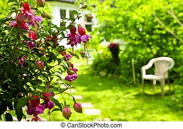jardin maison