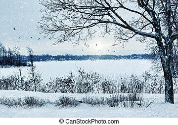 lac, paysage, hiver, négligence