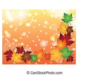 lumière colorée, feuilles, effets, frontière, érable