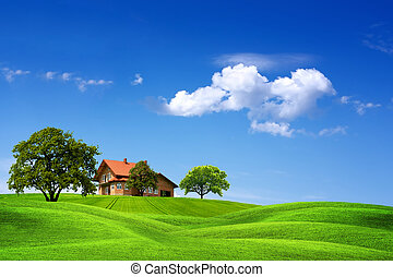 maison, paysage vert