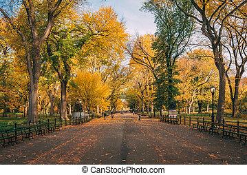 manhattan, york, couleur, central, automne, nouveau, ville, centre commercial, parc