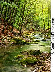 montagne, rivière, forêt, profond