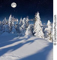montagnes, moon., entiers, paysage hiver