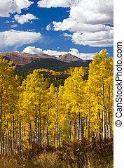 montagnes, rocheux, colorado, paysage, automne