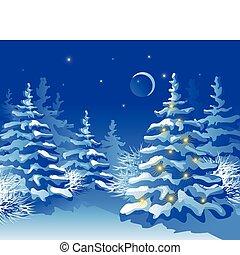 noël, nuit, forêt, hiver