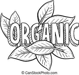 nourriture, croquis, organique