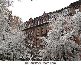 nouveau, ville, hiver, york