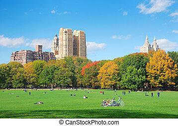 nuage, central, ciel bleu, ville parc, york, nouveau