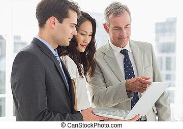 ordinateur portable, équipe, business, regarder, ensemble