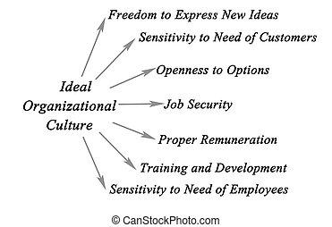 organisationnel, culture, idéal