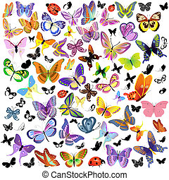papillon, coccinelle, ensemble