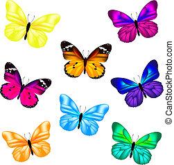 papillon, ensemble, icône