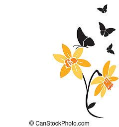 papillons, noir