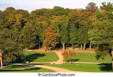 parc, automne