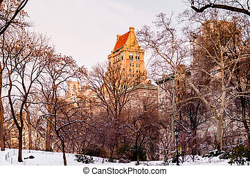 parc, central, hiver, new york
