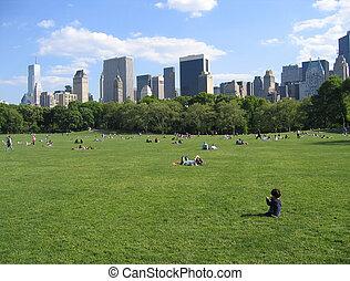 parc central, ny