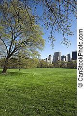 parc central, ville, york, nouveau