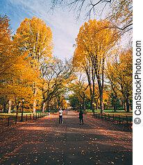 parc, manhattan, nouveau, couleur, central, ville, centre commercial, automne, york