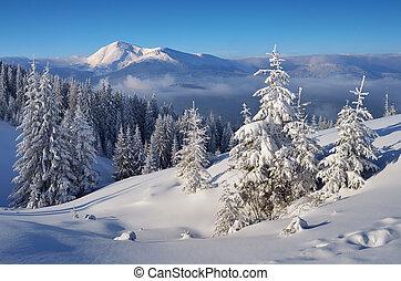 paysage, hiver, beau