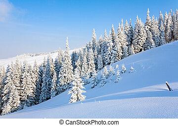 paysage montagne, hiver