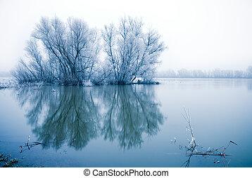 paysage, scène hiver