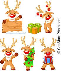 peu, separately, groupé, reindeer., cinq