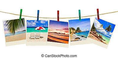 photographie, vacances plage, pinces