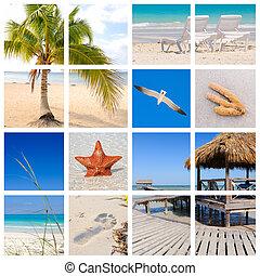 plage, exotique, collage