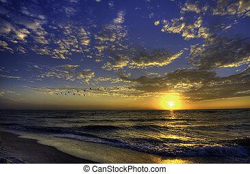 plage, floride, coucher soleil