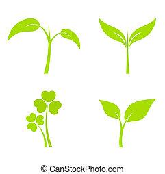 plante, icônes
