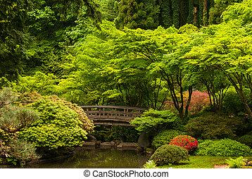 pont bois, japonais jardin