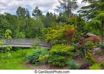 pont, jardin, bois, île, japonaise, pied, tsuru