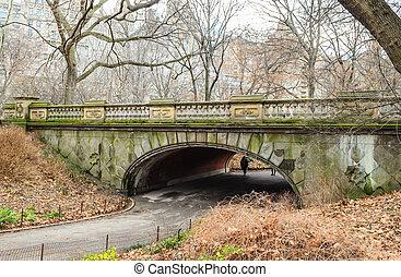 pont, parc, vieux, york, beau, ville, usa, central, nouveau