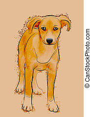 portrait, sdf, chien, errant