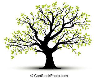printemps, feuilles, vecteur, -, arbre