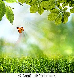 printemps, résumé, arrière-plans, été