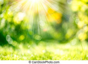 printemps, rayons soleil, arrière plan flou, nature