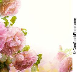 résumé, fond, frontière, floral, rose rose, beau