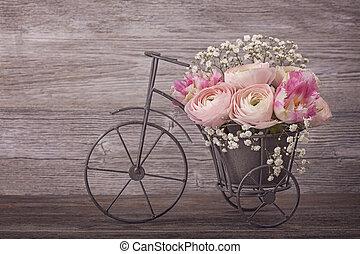 ranunculus, fleurs