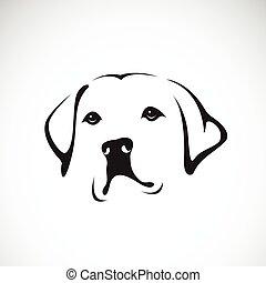 retriever), animals., vecteur, fond, blanc, head(labrador, chien, pet.