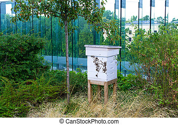 ruche, bâtiment, toit