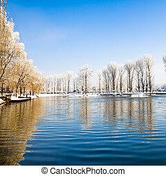 scénique, couvert, lac, hiver, neige, arbres.